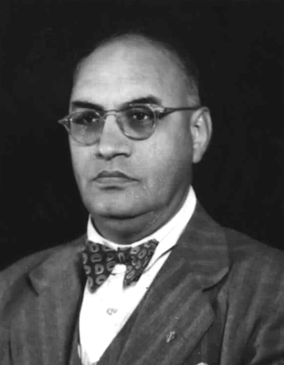 Profile image of Desai, Shirishkant Varjray