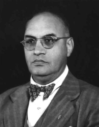 Profile image of Desai, Shirishkant Varjray
