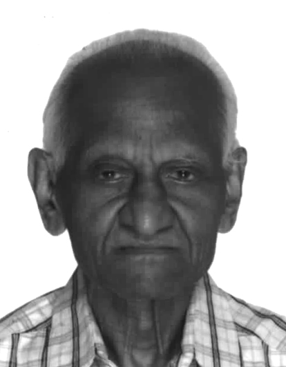 Profile image of Warke, Prof. Chindu Sona