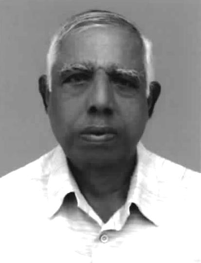 Profile image of Padayatty, Prof. Joseph Devassy