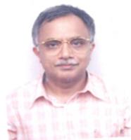 Profile image of Borkar, Dr. Vivek Shripad