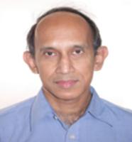 Profile image of Banerjee, Prof. Sunanda