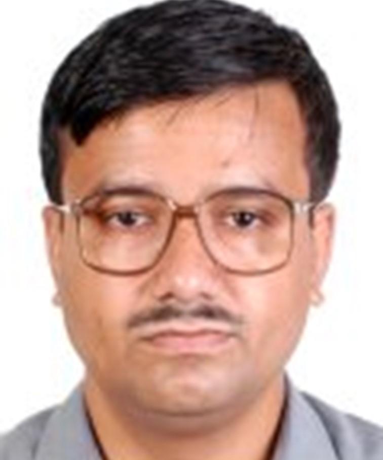 Profile image of Majumder, Prof. Gobinda