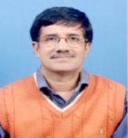 Profile image of Mandal, Prof. Mahitosh