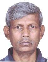 Profile image of Mandal, Prof. Prabhat